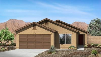 Albuquerque Single Family Home For Sale: 2415 Sorral Lane SW