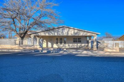 Albuquerque Single Family Home For Sale: 10509 Benavides Road SW