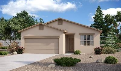 Albuquerque Single Family Home For Sale: 2447 Del Timbre Lane SW