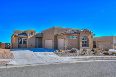 Rio Rancho Single Family Home For Sale: 6084 Redondo Sierra Vista NE