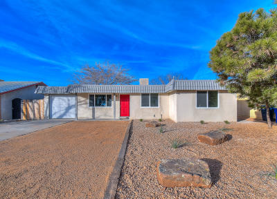 Albuquerque Single Family Home For Sale: 1217 Willys Knight Drive NE