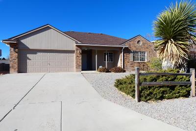 Rio Rancho Single Family Home For Sale: 4205 Dara Drive NE