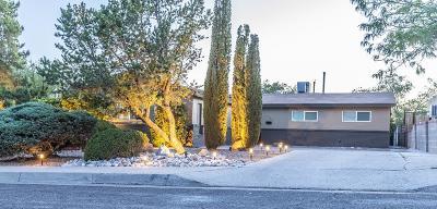 Albuquerque Single Family Home For Sale: 1709 Vassar Drive SE