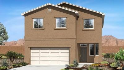Rio Rancho Single Family Home For Sale: 5834 Eddy Drive NW