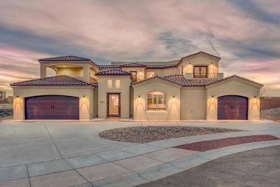 Albuquerque Single Family Home For Sale: 8015 Alto Rey Court