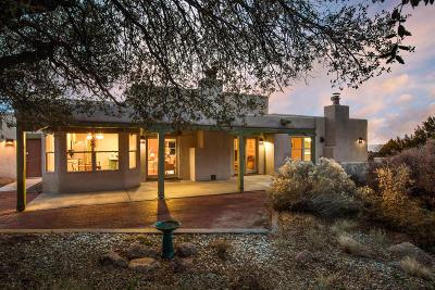 Albuquerque Single Family Home For Sale: 359 Big Horn Ridge Drive NE