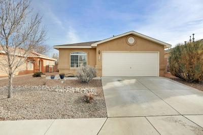 Albuquerque Single Family Home For Sale: 6748 Ventana Hills Road NW