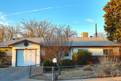 Albuquerque Single Family Home For Sale: 12605 Turquoise Avenue NE