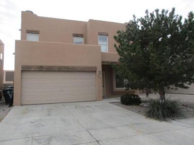Albuquerque Single Family Home For Sale: 2528 Sarita Avenue NW