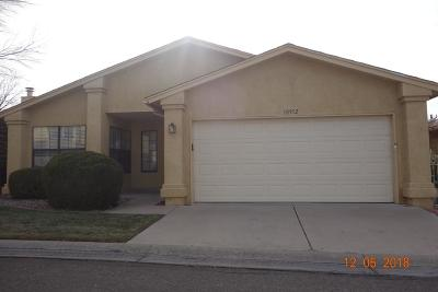 Albuquerque Single Family Home For Sale: 10912 Clyburn Park Drive NE