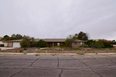 Las Cruces Single Family Home For Sale: 3225 Arrowhead Road