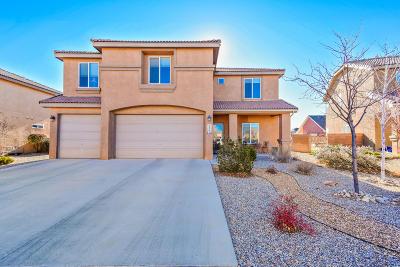Rio Rancho Single Family Home For Sale: 2537 Camino Catalonia SE