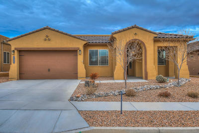 Rio Rancho Single Family Home For Sale: 2529 Vista Manzano Loop NE