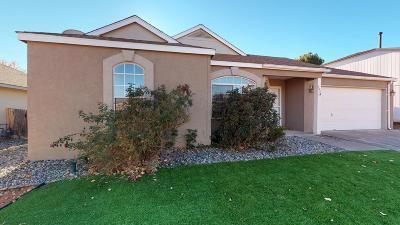 Rio Rancho Single Family Home For Sale: 1921 Verbena Drive NE