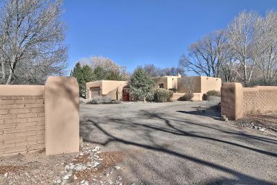Single Family Home For Sale: 121 Camino De Lucia