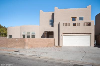 Albuquerque Single Family Home For Sale: 4629 Spanish Sun Avenue NE