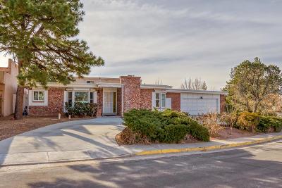 Albuquerque Single Family Home For Sale: 9620 San Gabriel Road NE