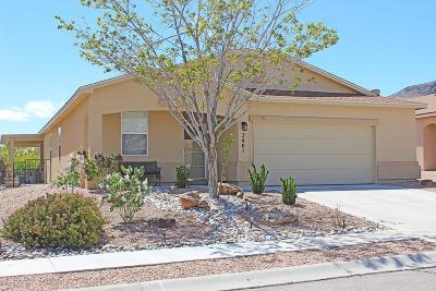 Valencia County Single Family Home For Sale: 3461 Wagon Wheel Street SW