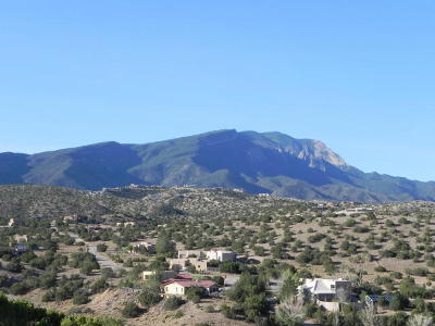 Placitas Single Family Home For Sale: 5 Windmill Court