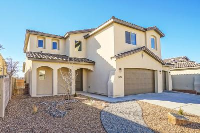 Single Family Home For Sale: 8716 Desert Finch Lane NE