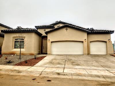 Albuquerque Single Family Home For Sale: 8712 Desert Finch Lane NE