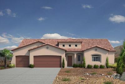 Sandoval County Single Family Home For Sale: 7229 Aldan Drive NE