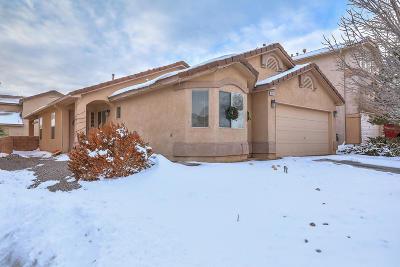 Rio Rancho Single Family Home For Sale: 1025 25th Street SE