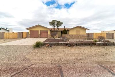 Rio Rancho Single Family Home For Sale: 245 Tarpon Avenue SE