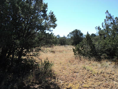 Sandia Park Residential Lots & Land For Sale: 18 Kiva Loop