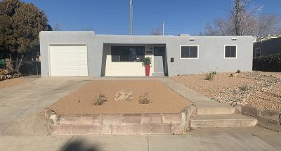 Albuquerque Single Family Home For Sale: 6109 Zimmerman Avenue NE