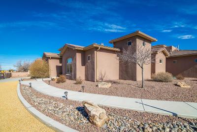 Albuquerque Single Family Home For Sale: 9101 Eagle Rock Avenue NE