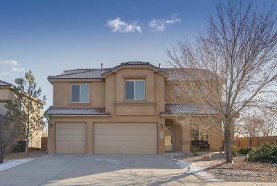 Rio Rancho Single Family Home For Sale: 2536 Camino Seville SE
