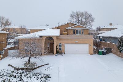 Rio Rancho Single Family Home For Sale: 2820 Mesa Road SE