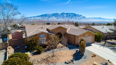 Albuquerque, Rio Rancho Single Family Home For Sale: 2508 Cabezon Drive NE