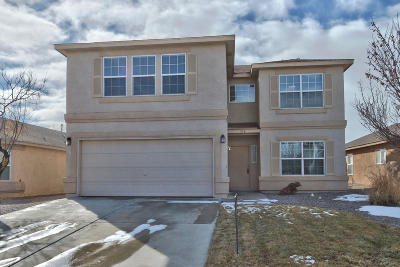 Rio Rancho Single Family Home For Sale: 356 Soothing Meadows Drive NE