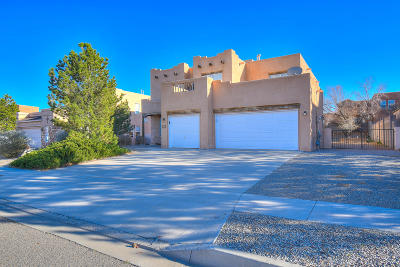 Rio Rancho Single Family Home For Sale: 5048 Night Hawk Drive NE