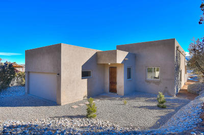 Placitas Single Family Home For Sale: 40A Camino De La Buena Vista Drive