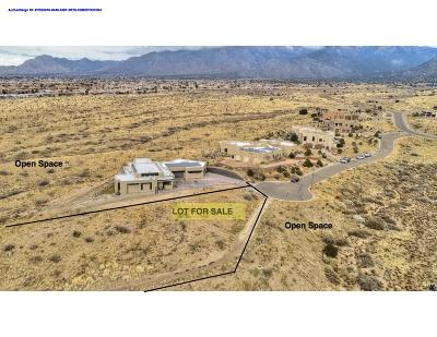 Residential Lots & Land For Sale: 13301 La Arista Place NE