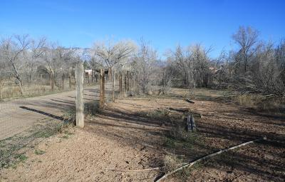Residential Lots & Land For Sale: 142 Reed Lane