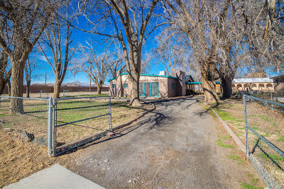 Los Lunas Single Family Home For Sale: 452 Marie Street SE