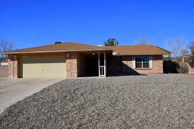 Rio Rancho Single Family Home For Sale: 7256 Spruce Mountain Loop NE