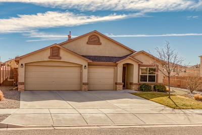 Albuquerque, Rio Rancho Single Family Home For Sale: 1302 Sidewinder Road NE