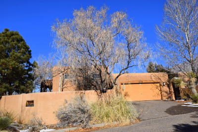 Sandia Heights Single Family Home Active Under Contract - Short : 2776 Wolfberry Place NE