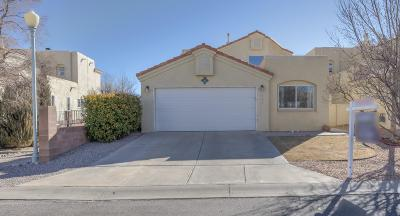 Rio Rancho Single Family Home For Sale: 660 Renaissance Loop SE
