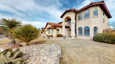 Rio Rancho Single Family Home For Sale: 564 Nicklaus Drive SE