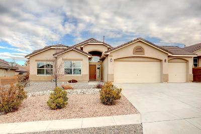 Rio Rancho Single Family Home For Sale: 4305 Cholla Drive NE