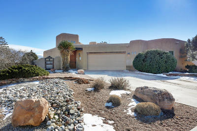 Rio Rancho Single Family Home For Sale: 1400 Wilkes Way SE