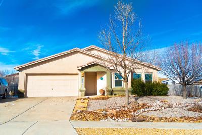 Rio Rancho Single Family Home For Sale: 5025 Mira Vista Drive NE