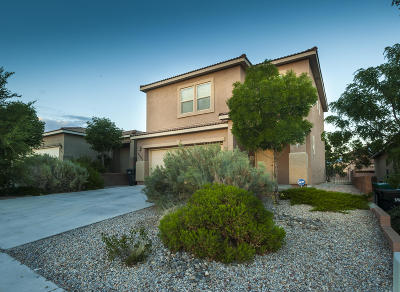 Rio Rancho Single Family Home For Sale: 2205 Delfinio Drive SE