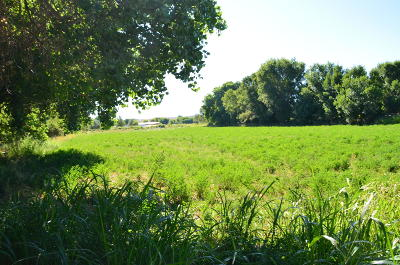 Valencia County Residential Lots & Land For Sale: 19 San Fernando Road